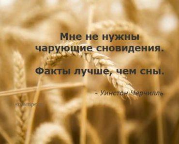 цитаты-черчилль