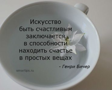 цитаты-бичер-smartips