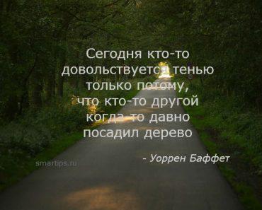 Уоррен Баффет цитаты-smartips