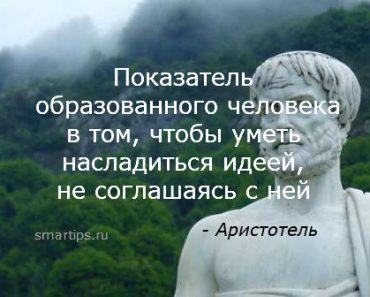 аристотель-цитаты