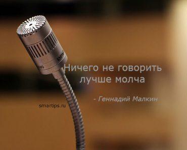 цитаты-малкин-молчание