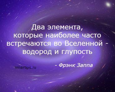 цитаты-заппа-гпупость-smartips