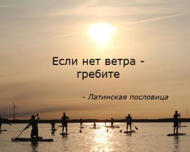 цитаты-мотивация-пословицы-smartips