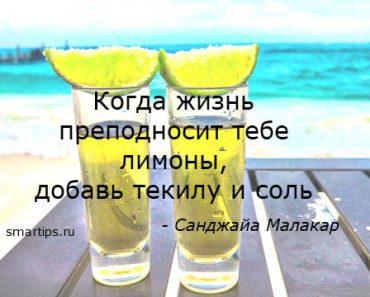 цитаты-текила-smartips