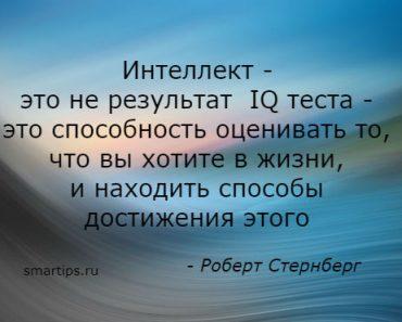 Цитаты Роберт Стернберг