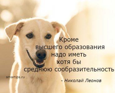 Цитаты Николай Леонов