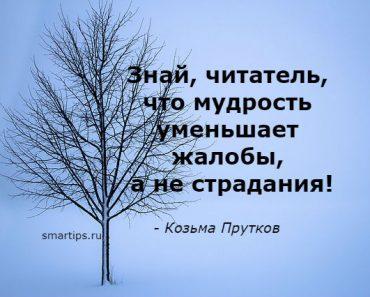 Цитаты Козьма Прутков