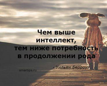 Цитаты Уильям Берроуз