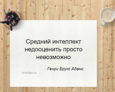 Цитаты Генри Брукс Адамс