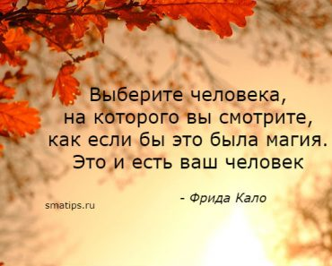 Цитаты Фрида Кало