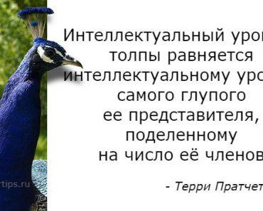 Цитаты Терри Пратчетт