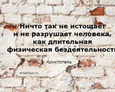 Цитаты Аристотель