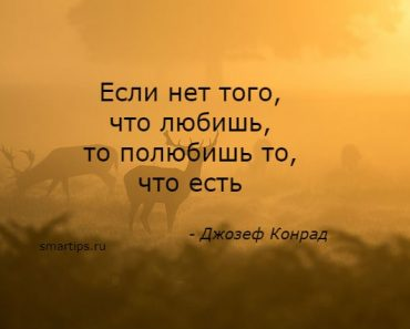 Цитаты Джозеф Конрад