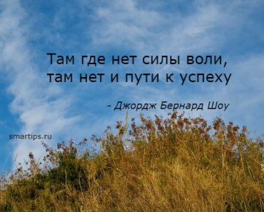 Цитаты Джордж Бернард Шоу