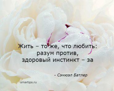 Цитаты о жизни и любви