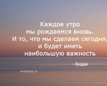 цитаты будда