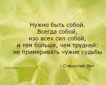 цитаты Станислав Лем